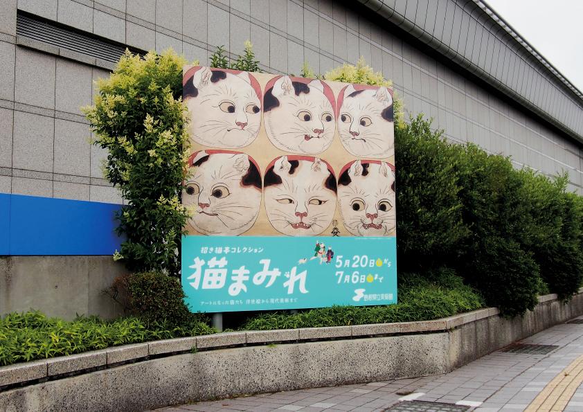 猫まみれ(4)