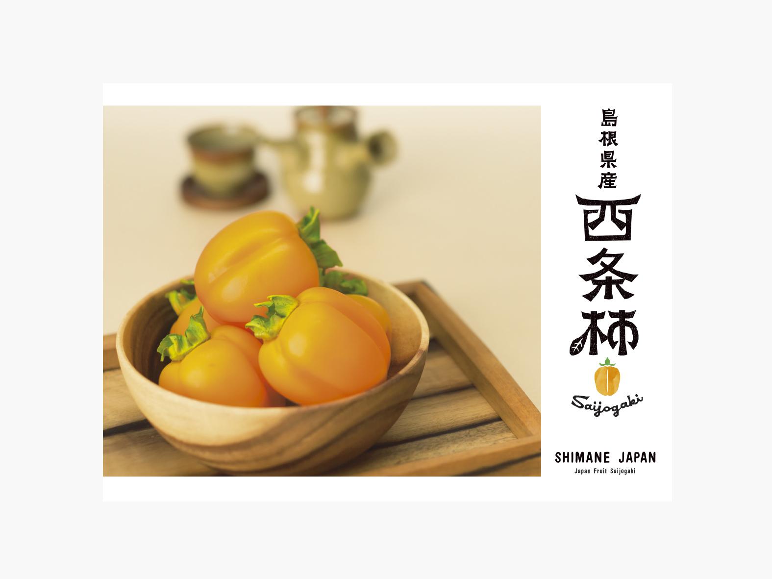 西条柿 海外向け広報(1)